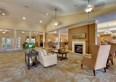 The Pinnacle of Southaven - Living Area
