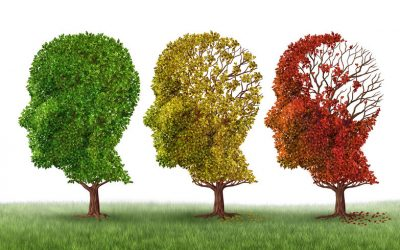 What can I do to prevent my own Alzheimer's?